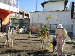 雨が降らない日が続き、乾燥で園庭に砂埃が舞ってしまうので、水を撒きました。 水が大好きな子ども達は大はしゃぎ!逃げたりあたろうとしたりと走り回ってました。