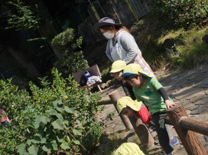 11,8年長交流会&鶴ヶ久保公園 (33)
